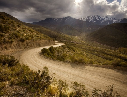 A Guide to Off-Roading For The Uninitiated